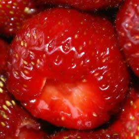 hop on the strawberry bandwagon with strawberry plants