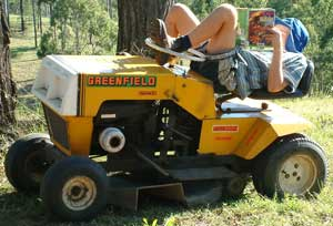 mowing strawberry plants