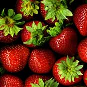 strawberry plants and vitamin c