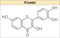 strawberry compound fisetin could help diabetics Strawberry Compound Fisetin Could Help Diabetics