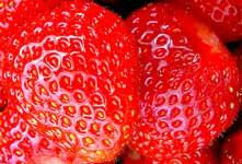 strawberries per day