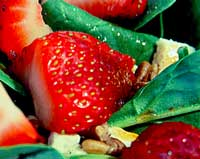 sweet strawberry spinach salad recipe
