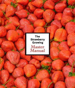 The Strawberry Growing Master Manual