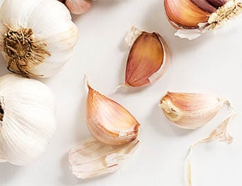 Cloves of garlic for strawberries